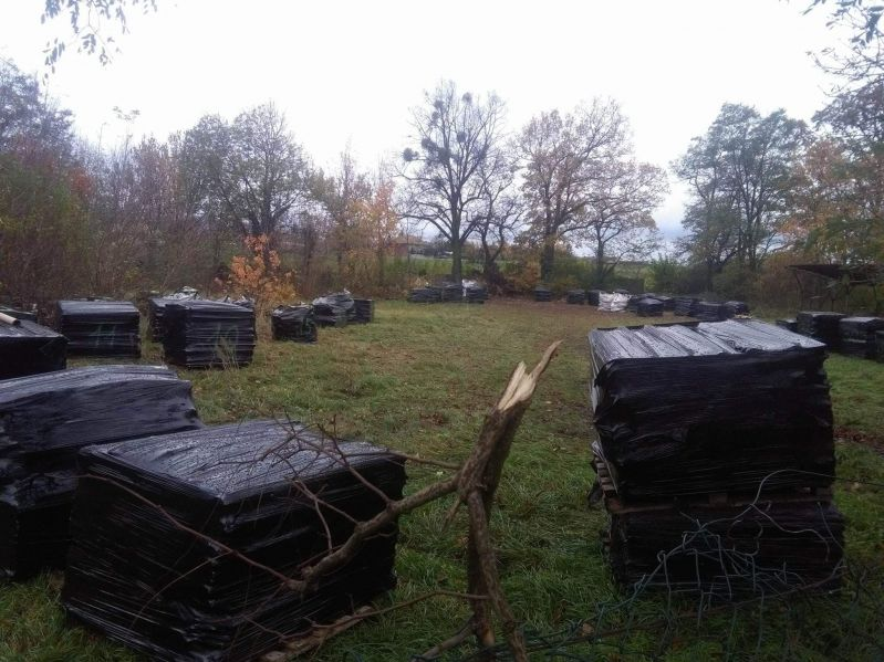 Codziennie realizujemy zlecenia, obejmujące odbiór eternitu zeskładowanego na posesji naszych klientów. Jednym z naszych zleceń był transport odpadów zawierających azbest z okolic wsi Stare Babice. Usuwanie azbestu z posesji naszego Klienta rozpoczęliśmy od zabezpieczenia terenu prac. Następnie nasi pracownicy wykonywali pakowanie oraz zabezpieczanie płyt eternitowych. Ostatnią czynnością